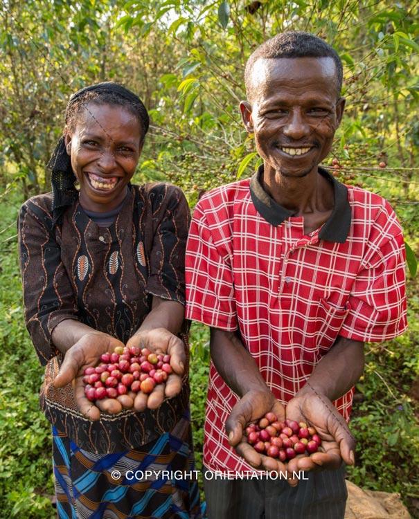 Fairtrade-Nederland-Koffie-Ethiopië-Effecten-klimaatverandering (18)