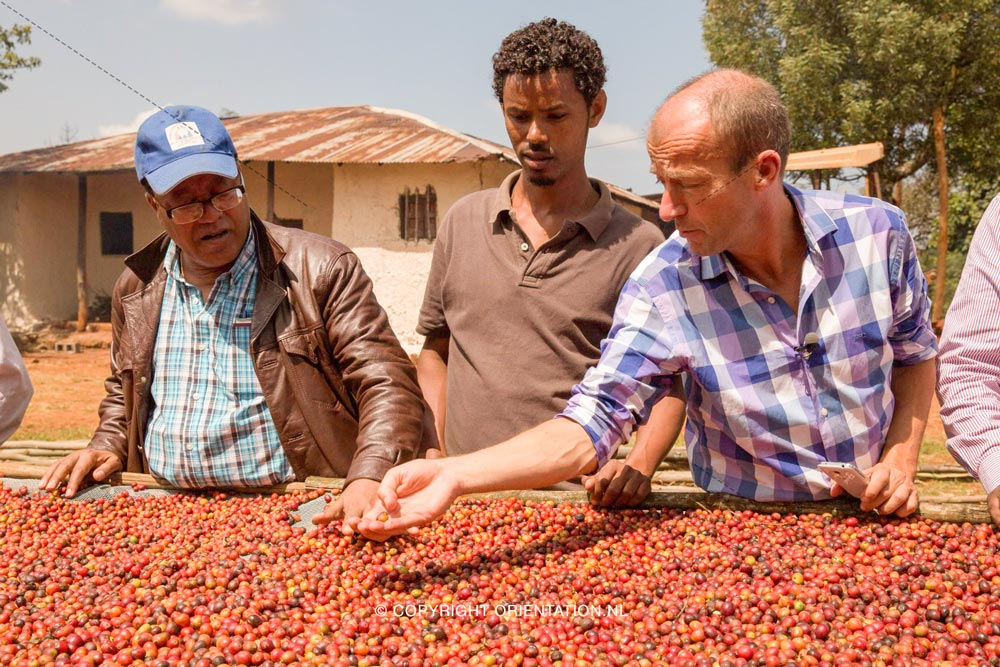 Fairtrade-Nederland-Koffie-Ethiopië-Effecten-klimaatverandering (6)