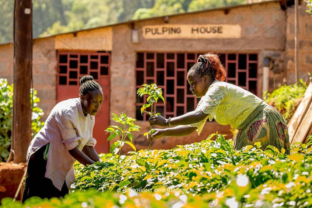 Fairtrade-Nederland_Climate-Academy_Kenia_14