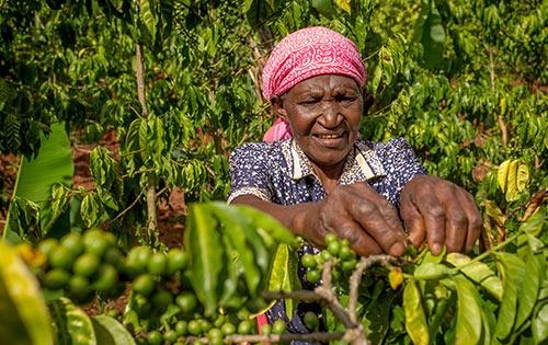 Fairtrade Nederland Climate Academy Kenia