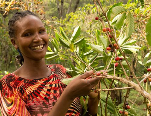 Fairtrade Nederland Coffee & Ethiopië – Photography