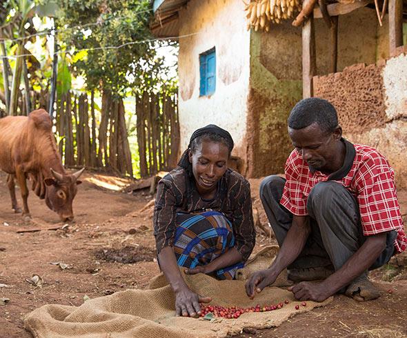 Fairtrade-koffieboeren-Silashi-&-Mulane_img05