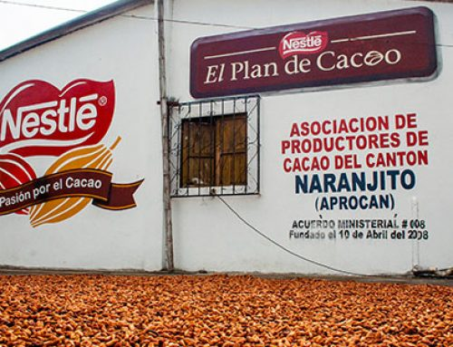 Nestlé Fairtrade Cocoa Plan