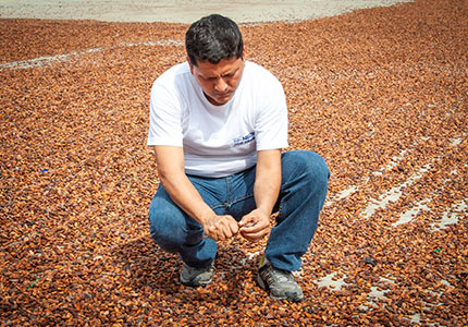 Nestlé-Cocoa-Plan_OTP_img01