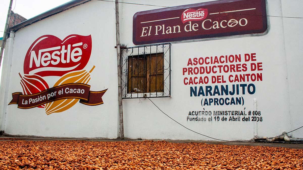 Nestlé-Cocoa-Plan_OTP_img06