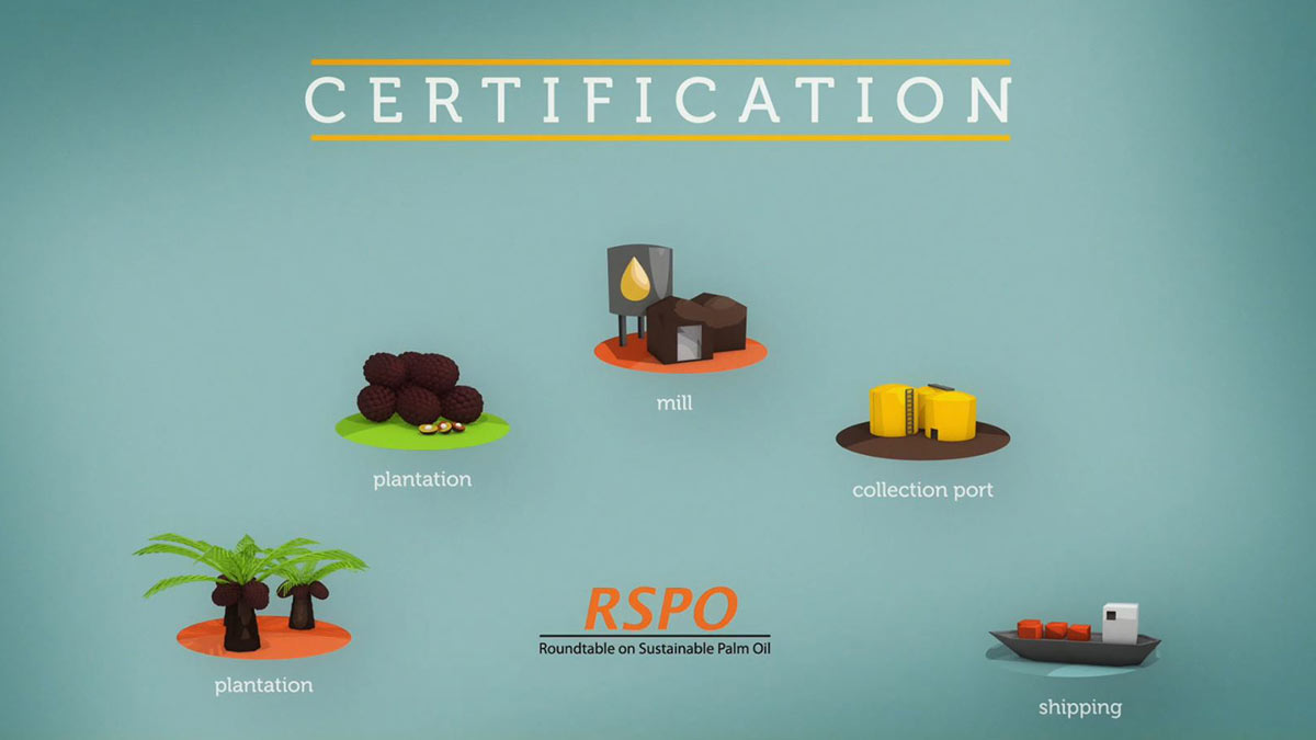 RSPO-Roundtable-on-Sustainable-Palm-Oil_img06