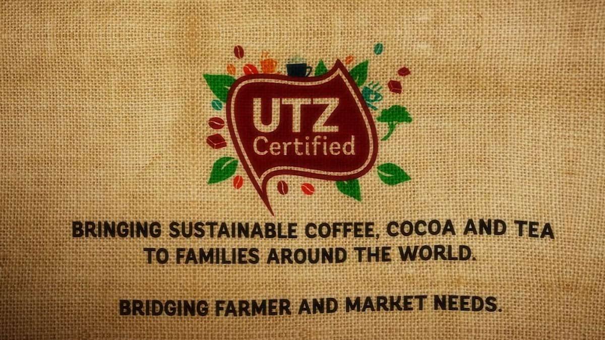 UTZ-Certified--10-years-06
